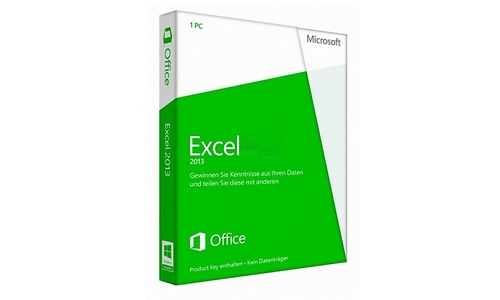 Microsoft Excel 2013 DE
