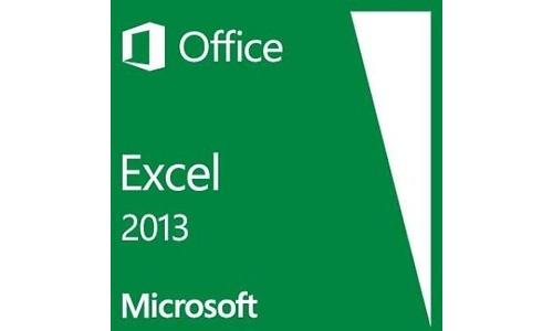 Microsoft Excel 2013 NL
