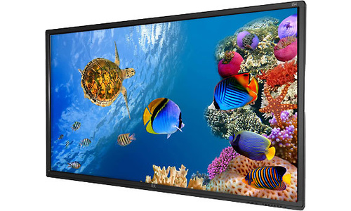 iBoardTouch LTE84-003V+P