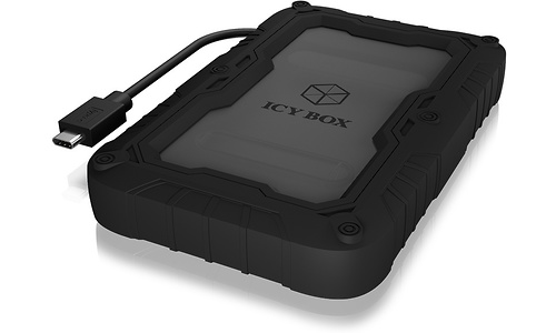 Icy Box IB-AC603P-C31