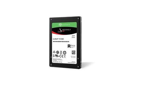 Seagate IronWolf 110 960GB