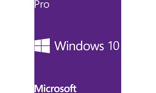 Microsoft Windows 10 Pro (EN)