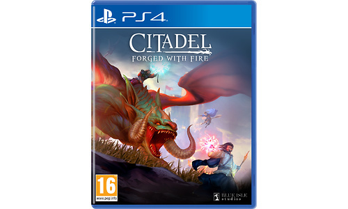 Citadel: Forged With Fire (PlayStation 4)
