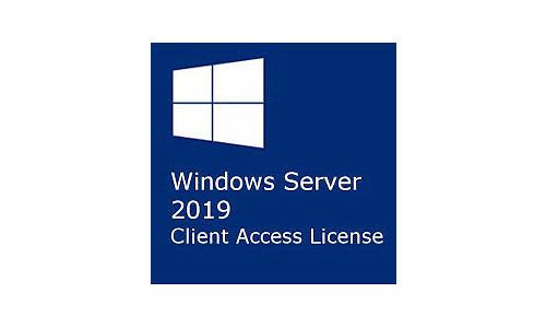 Microsoft Windows Server 2019 Cal (EN)
