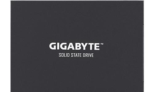 Gigabyte UD Pro 256GB (GP-UDPRO256G)